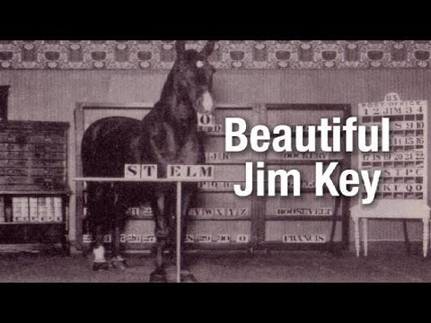 Beautiful Jim Key  - the world's smartest horse