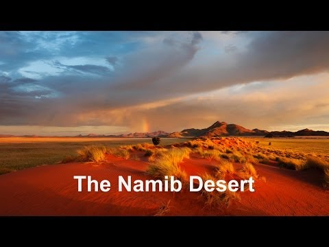Namib Desert - Time Lapse And Wildlife Photography Namibia, Africa