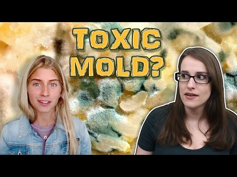 Is Raw Alignment Really Sick From Mold Illness?