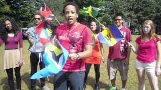 Wave yuh Flag Promo Vid 2013