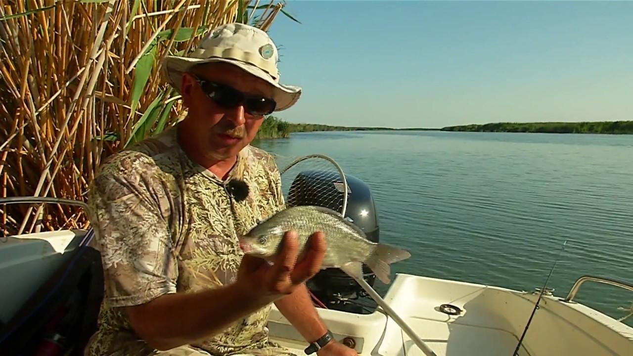 Когда сезон рыбалки в казахстане