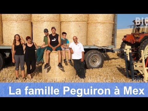 Papa, es-tu sûr d'avoir fait le bon choix - Claude Peguiron et sa famille se lancent au bio