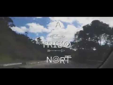 Deixe-me ir - 1kilo (Cover A Tribo Nort)