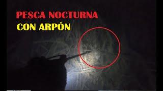 PESCA NOCTURNA con Arpón, salió para el caldito