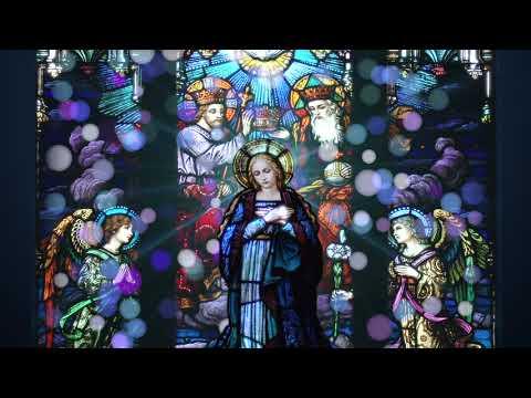 Hail Holy Queen Enthroned Above [w/ lyrics] | Catholic Hymn