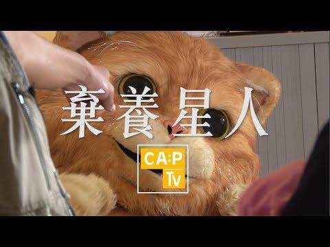 CapTV【棄養星人】貓 | 敏感|古天樂 - YouTube