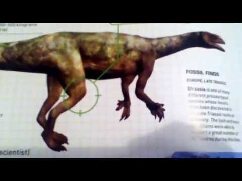 Field Guide to Dinosaurs:4 Efraasia