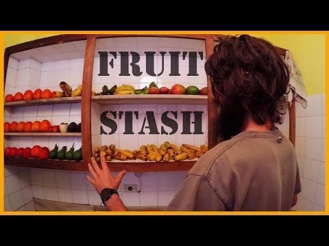 SUBTROPICAL GOODNESS: OUR CURRENT FRUIT STASH