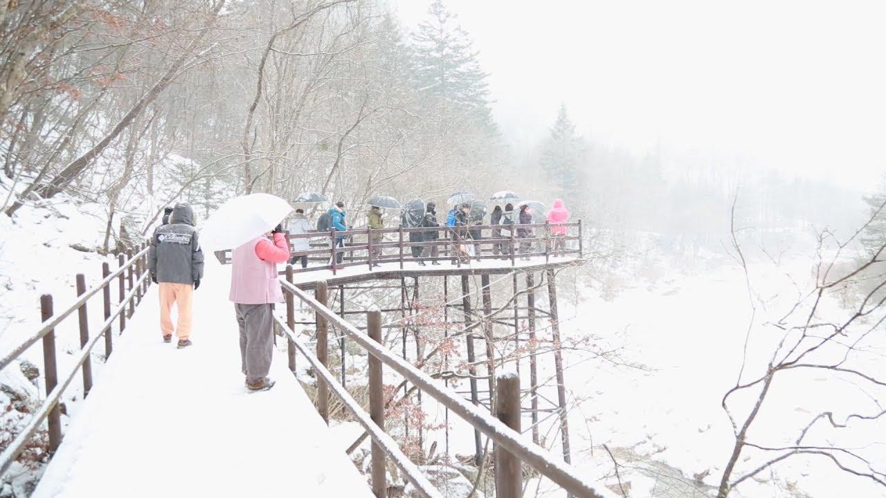 43. Đường Seonjae núi Odae, con đường tu hành nghìn năm tuổi l KBS WORLD