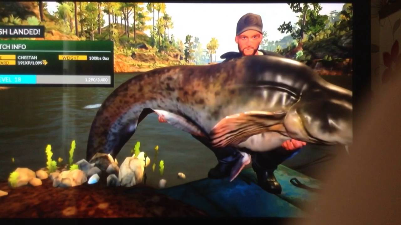 Tips on how to catch the 100 lb boss cat fish in euro for Fishing xbox one