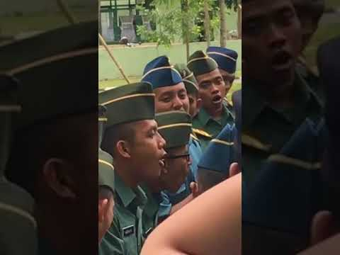 Perwira Karir TNI