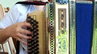 Slowenischer Bauerntanz  / Steirische Harmonika
