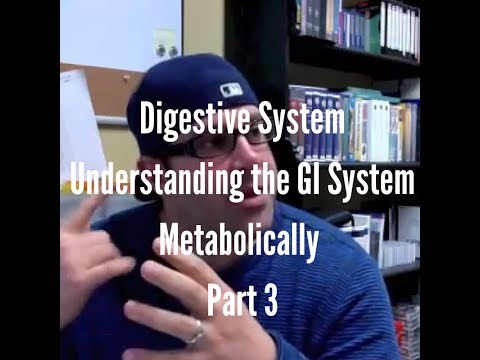 Digestive System - Understanding the GI System Metabolically...Part 3