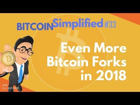 BITCOIN reaches $20 K | BITCOIN SIMPLIFIED #33
