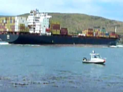 Container ship at entrance to Otago harbour