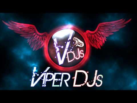 Bhangra Mix Part 1 | Viper DJs