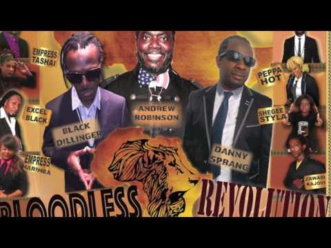 Bloodless Revolution Project , Radio Mix By Dj Sandman For Rtm Radio Uk