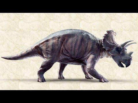 Wendiceratops pinhornensis, a new horned dinosaur