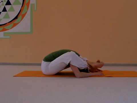 Yoga Vidya Shop