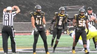 Towson Football shuts out Delaware 19-0