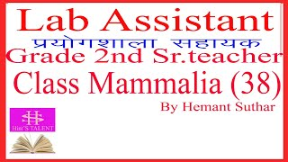 Lab assistant, 2nd grade teacher science biology lecture 39 mammalia