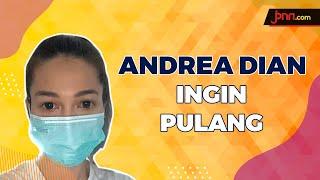 Seminggu Karantina, Andrea Dian Ingin Pulang untuk Suaminya - JPNN.com