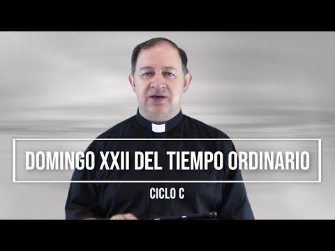 Domingo XXII del Tiempo Ordinario - Ciclo C - El que se humilla será ensalzado