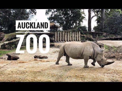 Auckland Zoo - GoPro - iPhone 7