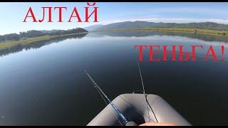 Хорошая вышла РЫБАЛКА в Республике Алтай на Теньгинском Озере