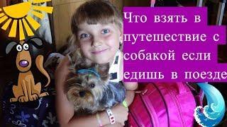 НА МОРЕ С СЕМЁНОМ! Что Нужно Взять с собой в Путешествие если едите с собакой