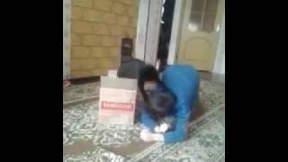 кот нападает нападает на человека....