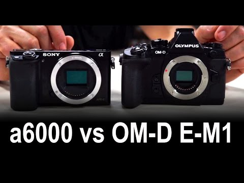 Olympus OM-D E-M1 Compared To Sony A6000 Review And Test Of Mirrorless Cameras