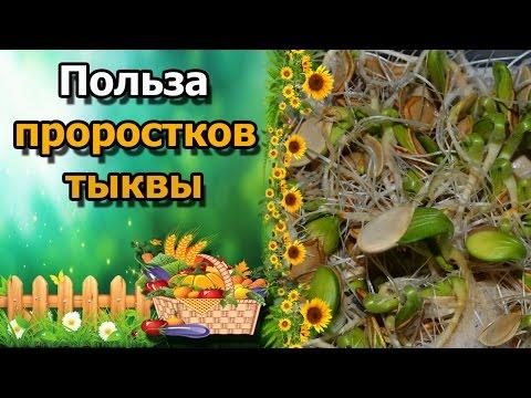 Фрукт дуриан: вкус и запах, полезные свойства, как едят дуриан