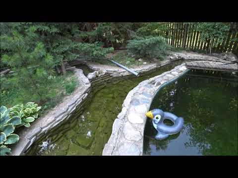 Как сделать пруд бассейн
