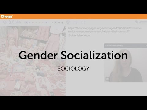 Gender Socialization | Sociology | Chegg Tutors