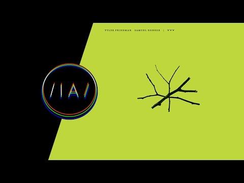 Tyler Friedman & Samuel Rohrer - YYY Original Mix