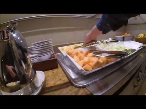 DoubleTree by Hilton Hotel**** Metropolitan - New York City review [HD]