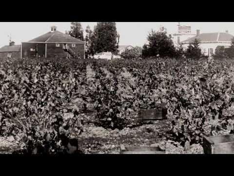 Livermore Valley - A Brief History (3min)