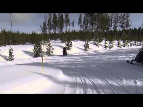 Winter in Yellowstone by Snowmobile