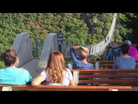 Mehr als nur ein Adrenalinkick: Die Geierlay-Hängeseilbrücke im Hunsrück