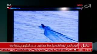 البحرين تعلن قتل واعتقال فارين من السجن باشتباك مسلح (شاهد)
