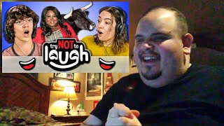 Try to Watch This Without Laughing or Grinning #74 ( REACTION!!! )