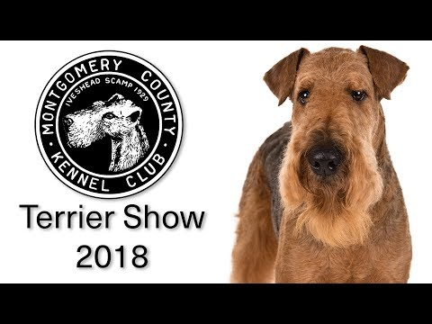 2018 Montgomery County Kennel Club Terrier Show