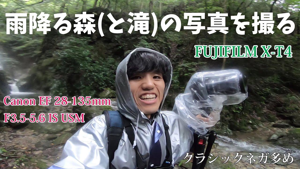 FUJIFILM X-T4 /  Canon 28-135mm F3.5-5.6 IS USM で雨降る森の写真を撮る(クラシックネガ多め)