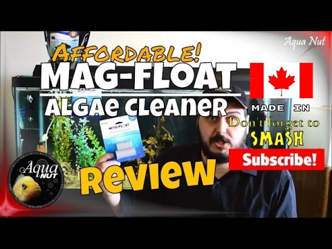 Mag-Float | The Best Fish Tank Aquarium Glass Algae Cleaning Magnet