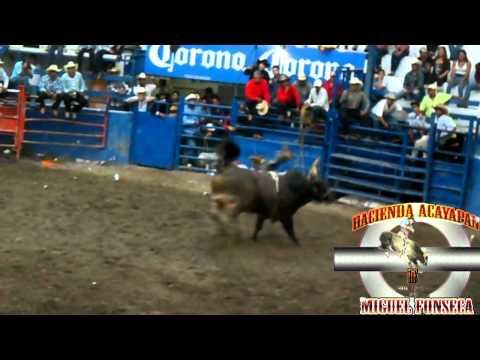 ESPECIAL RANCHO DE AGUAS # 3