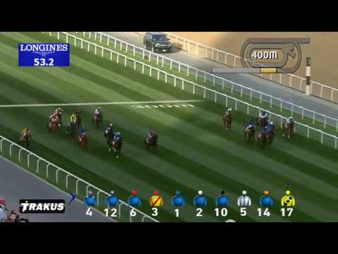 Race 3 Nad Al Sheba Turf Sprint