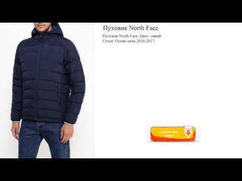 Пуховик North Face  синий короткий