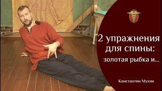 2 упражнения для спины: золотая рыбка и.../ Константин Мухин