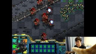 2017.04.28 [깝도이] 스타 빨무 팀플 StarCraft Brood War